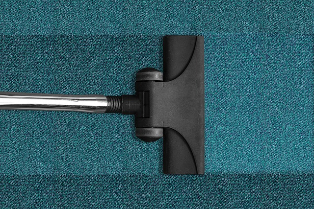 You are currently viewing כיצד שירותי ניקוי שטיחים למגורים יכולים לשפר את איכות האוויר הפנימית שלך